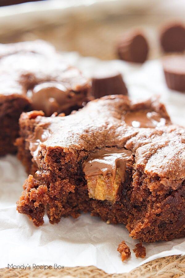 Peanut Butter Lunch Lady Brownies close up on parchment paper.